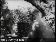 """Битва за Корею /""""Мы побывали в аду"""" Корейская война / Battle for Korea /""""Out time in hell"""" The Korean War (2001) TVRip"""
