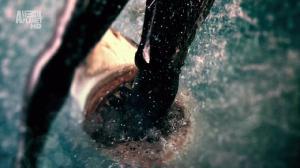 Discovery. Неделя фильмов про акул. Акулы-людоеды / Discovery: Shark Week. Rogue Sharks (2011) HDTVRip 720p