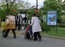 ������� ������� / The Blue Butterfly (2004) DVDRip