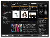 MusicBee 1.3.4334 Multi (русский)