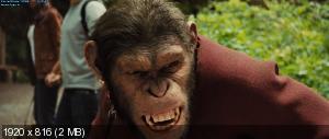 Восстание планеты обезьян / Rise of the Planet of the Apes (2011) BDRip 1080p / 13.0 Gb [Лицензия]