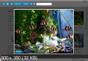 Мои питомцы. Рыбки (ID Company/2011)