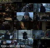 Kret  (2011) DVDRiP XViD