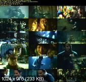 Flowers Of War (2011) CAM Xvid
