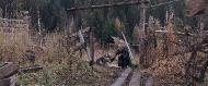 Сибирь. Монамур (2011/Blu-ray/BDRip/Отличное качество)