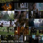 �luby Panie�skie (2010) DVDRip XviD PL