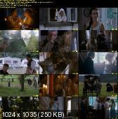 Śluby Panieńskie (2010) DVDRip XviD PL