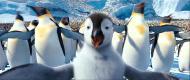 Делай ноги 2 / Happy Feet Two (2011) DVDScr