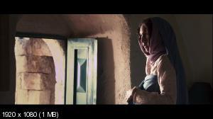 Забивание камнями Сорайи М. / The Stoning of Soraya M. (2008) BD Remux + HDRip 2100/1400/700 Mb