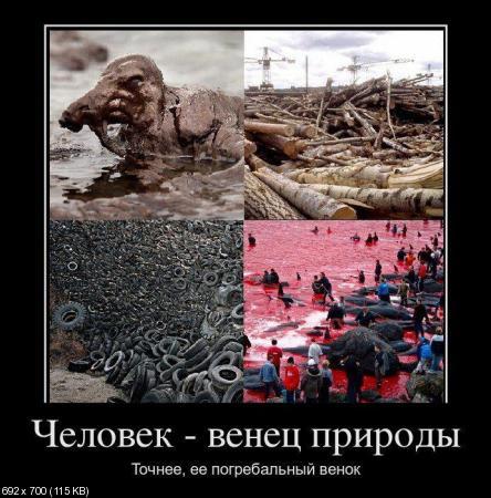 Свежая подборка демотиваторов от 24.02.2012