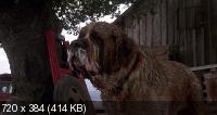 Куджо / Cujo (1983) BDRip 1080p / 720p + BDRip