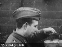 Солдаты Вермахта / Soldiers of the Wehrmacht (1999) DVDRip